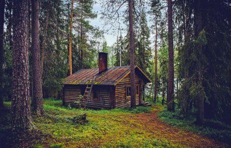 הכל על בניית בית מעץ באמצעות בנייה קלה